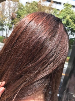 New My Hair COLOR