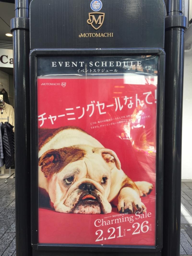 今月横浜 元町はチャーミングセールです(^ ^)